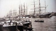 "Amburgo, 1888: ""Coccodrilli… d'agosto"""
