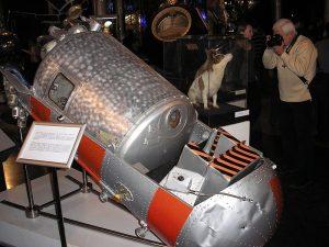 La capsula Korabl-Sputnik 2 e il corpo impagliato di Strelka. Wikimedia.org/Pretenderrs/CC-BY-SA-3.0