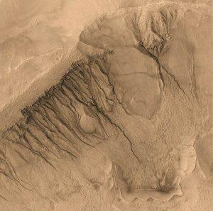 La foto del Mars Global Surveyor che mostra i canali che si crede possano essere stati creati dallo scorrere dell'acqua. L'area della foto copre circa 1.500 metri quadrati di superficie del pianeta (credit: Pubblico Dominio)