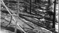 La cosa che cadde su Tunguska