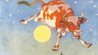 Mucche astrali al Politecnico di Milano? L'università ospita un convegno sulla biodinamica
